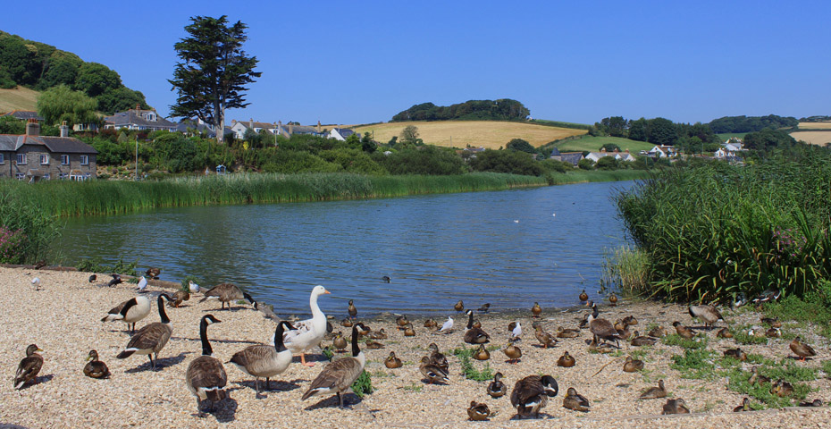 Slapton Ley Nature Reserve in Start Bay