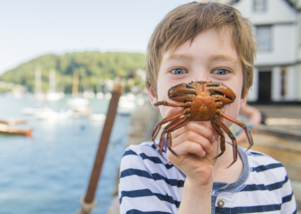 Crabbing tips _ child with crab